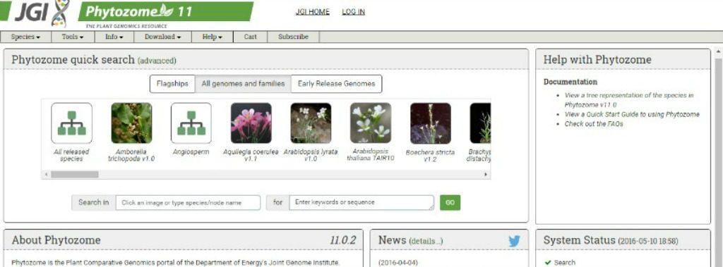 Phytozome database