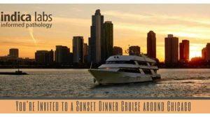 Yacht Cruise900