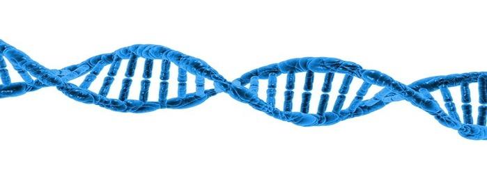 DNA, RNA, qPCR