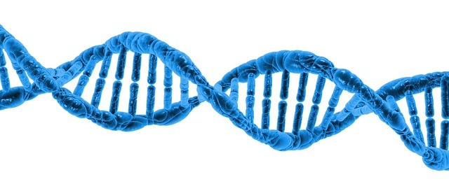 Importance of understanding gene function