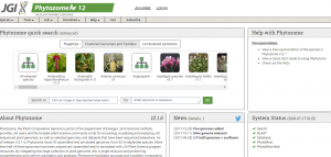 An Updated Round-Up of the Top Plant Genome Databases