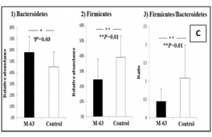 ratio of Firmicutes to Bacteroidetes in flood victims with IBS after administration of probiotic Bifidobacterium infantis M63.
