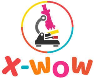 X-WOW